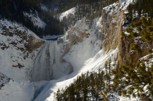 The Grand Canyon of Yellowstone 1