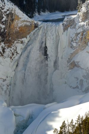 The Grand Canyon of Yellowstone 4