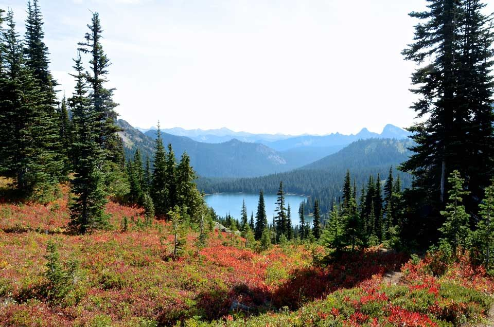 Mt-Rainier-Dewey-Lake.jpg