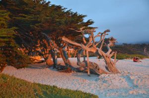 Reflections of Sunset in Carmel, California
