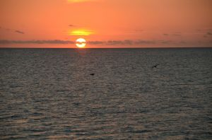 Sunset, Great Barrier Reef