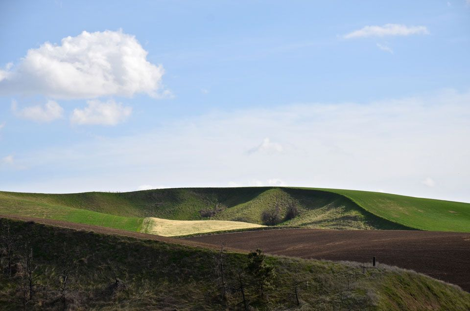 Palouse-in-4-6.jpg