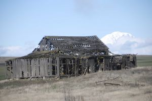 Old Barn, Washington state